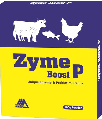 Zyme Boost P